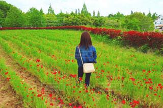 緑豊かな緑のフィールドに立っている人の写真・画像素材[1170776]