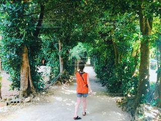 木の隣に立っている女性の写真・画像素材[2141938]