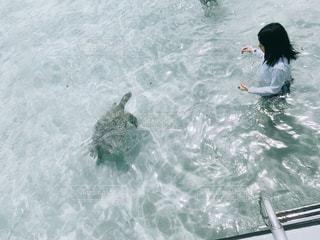 水の体内で泳いでいる人の写真・画像素材[2142153]