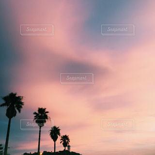 風景の写真・画像素材[238679]