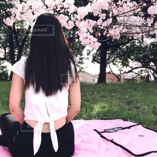 春の写真・画像素材[425972]