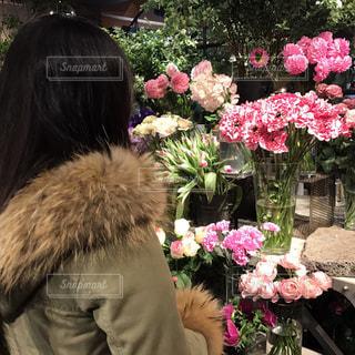 花の写真・画像素材[476788]