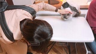 テーブルに座っている人の写真・画像素材[1585415]