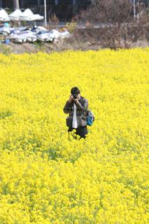 黄色の世界の写真・画像素材[905889]