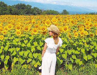 大好きなひまわり畑の写真・画像素材[1408000]