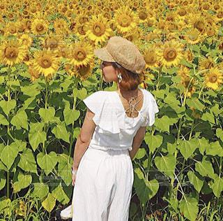 ひまわり畑に囲まれた夏休みの写真・画像素材[3537873]