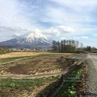 No.478503 桜