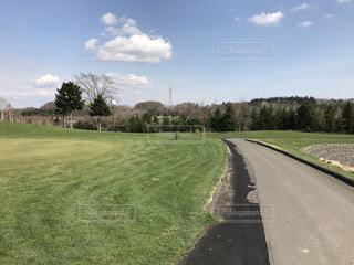 北海道,田舎,グリーン,ゴルフ場,北広島