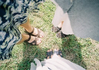 草の写真・画像素材[85957]