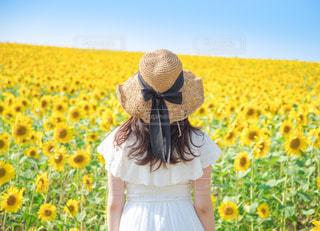 黄色のドレスを着ている人の写真・画像素材[918550]