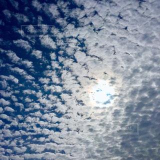 青い空とうろこ雲の写真・画像素材[1102461]