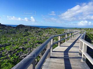 沖縄の青い空 - No.1102469