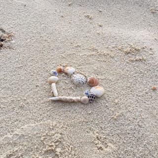 ビーチ,砂浜,貝殻,沖縄,ハート,シェル
