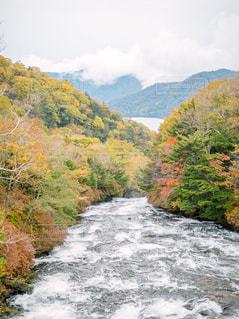 秋,紅葉,赤,黄色,日光,旅行,竜頭ノ滝,10月