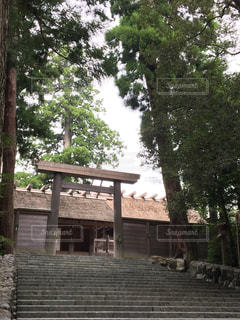 背景の木と家の写真・画像素材[1049067]