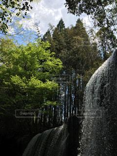 森の中の大きな滝の写真・画像素材[1049074]