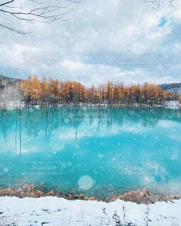 大きな水域の写真・画像素材[4124030]