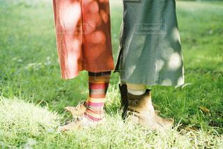 草の中に立っている小さな男の子の写真・画像素材[4412101]