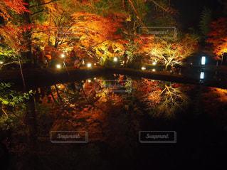 水面に映る赤の写真・画像素材[847511]