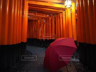 赤い傘と赤い鳥居 - No.847526
