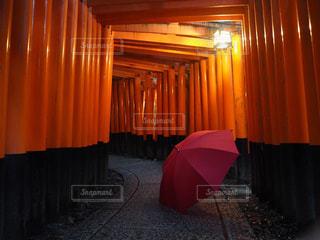 雨,傘,赤,鳥居,梅雨
