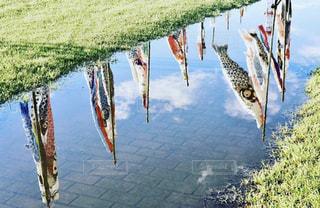 雨の写真・画像素材[2165883]