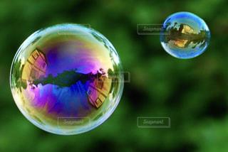 緑の写真・画像素材[464687]