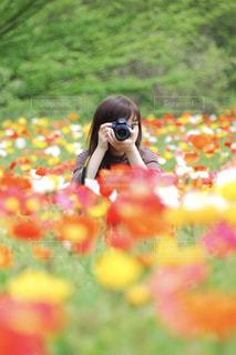 花畑の写真・画像素材[466092]