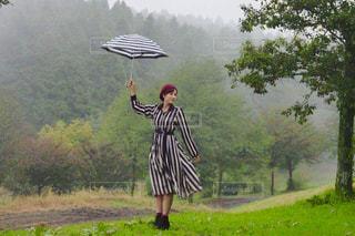 雨 - No.838032