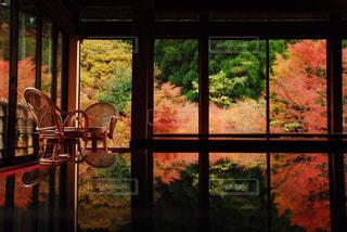 花の花瓶が窓の前で座っています。の写真・画像素材[1604299]