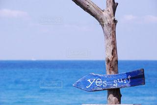 水域の上の標識の写真・画像素材[2359160]