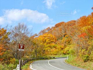 福島県の写真・画像素材[456372]