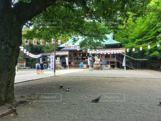 栃木県の写真・画像素材[456818]