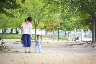 お散歩の写真・画像素材[1158295]