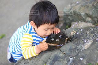 小さな水たまりに夢中の写真・画像素材[1158454]