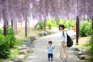 公園,屋外,親子,散歩,藤,フジ,母,ママ,お母さん,振り返り,2人,全身写真