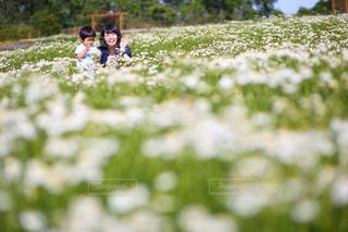 自然,お花畑,花畑,親子,笑顔,母,ママ,お母さん,色鮮やか,カモミール畑