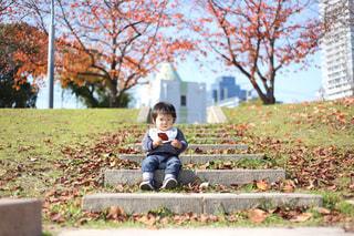 公園での写真・画像素材[1249609]