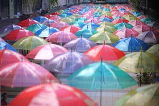 カラフルな傘の写真・画像素材[1261676]