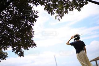 風の写真・画像素材[1329793]