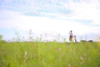 風景,空,秋,親子,散歩,秋空,東員町