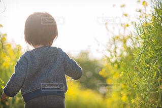 草の中に立っている小さな男の子の写真・画像素材[4266818]