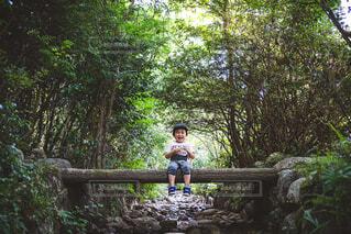 木の中に座っている人の写真・画像素材[4428615]