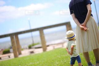 草の中に立っている小さな男の子の写真・画像素材[4445579]