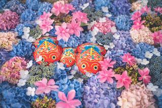 カラフルな花のグループの写真・画像素材[4555931]