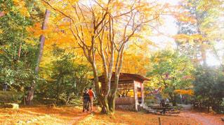 山中温泉 - No.789912