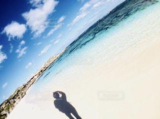 オーストラリア ロットネスト島の写真・画像素材[1443051]