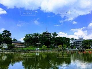 古都奈良の文化財【興福寺】の写真・画像素材[806948]