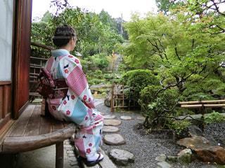 庭を眺める女性の写真・画像素材[917001]