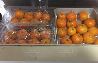 オレンジ,フルーツ,みかん,甘い,冷凍庫